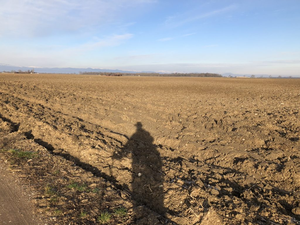 Weit und breit nur Felder