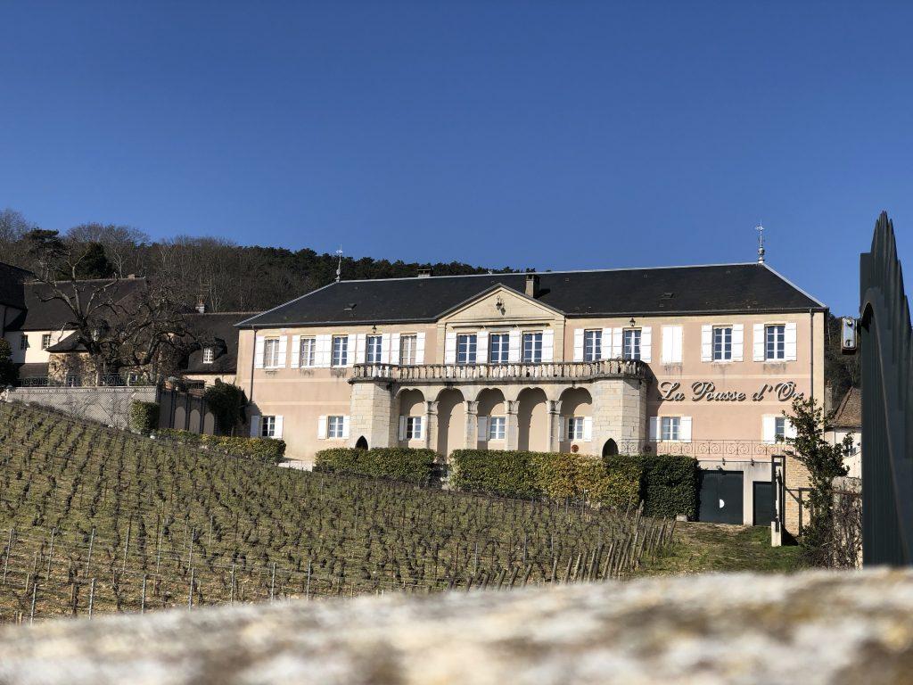 La Pousse d'Or, Chassagne-Montrachet